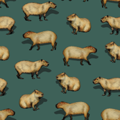 Cute Capybara Pattern - Giant Rodents on Dark Teal