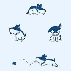 Blue Corgi