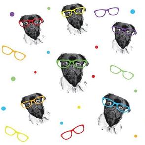 Pug smarts