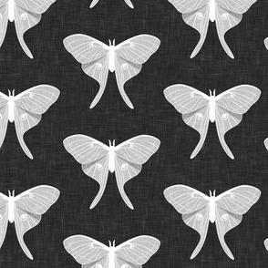 luna moth - v1 - grey - LAD20
