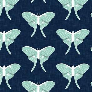 luna moth - v1- aqua on blue - LAD20