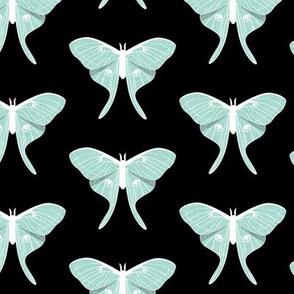 luna moth -  mint on black -  v1 - LAD20