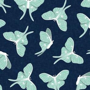 luna moth - aqua on blue - LAD20