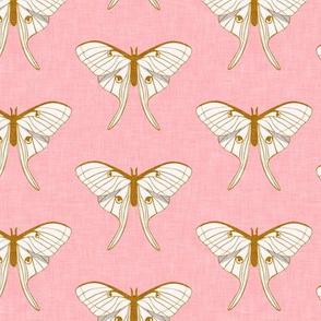 luna moth -  v1 gold on pink - LAD20