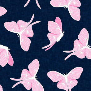 (jumbo scale) luna moth - pink on navy - LAD20