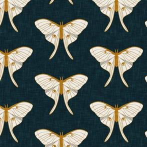 luna moth - v1 - gold on dark teal - LAD20