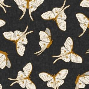 luna moth - gold on grey - LAD20