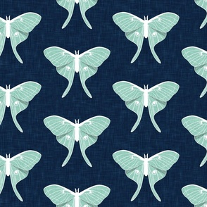 (jumbo scale) luna moth - v1 - aqua on blue - LAD20