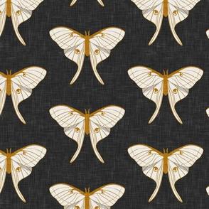 luna moth - v1 - gold on grey - LAD20
