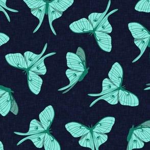luna moth - teal on navy - LAD20