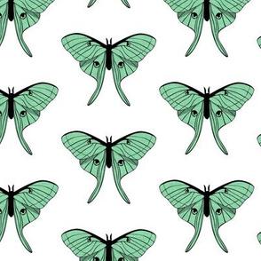 luna moth - v1 green - LAD20