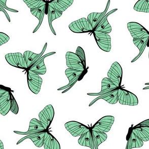 luna moth - green - LAD20