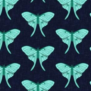 luna moth - teal on navy - v1 - LAD20