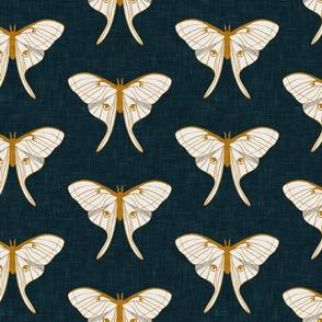 (jumbo scale) luna moth - v1 - gold on dark teal - LAD20