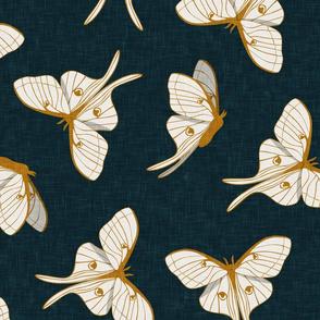 (jumbo scale) luna moth - gold on dark teal - LAD20