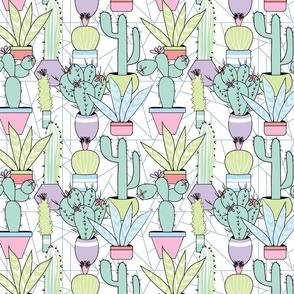 Soft Creamy Succulent Garden smscale