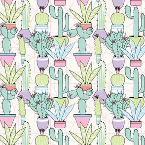 Soft Creamy Succulent Garden