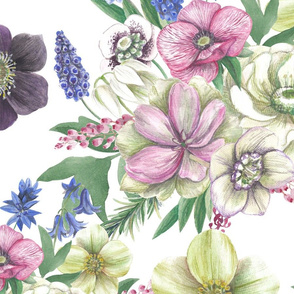 Seamless surface pattern with ornament of hand drawn watercolor illustrations of Hellebores and muscari flowers composition on white background