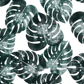 (jumbo scale) monstera leaves - dark green - LAD20