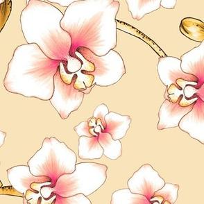 Orchids Large - Cream