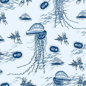 Open Ocean - Little Predators