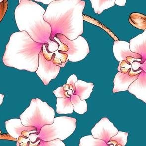 Orchids Large - Blue