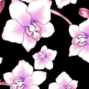 Orchids Large - Black