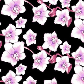 Orchids Small - Black