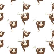Brown sloth seamless pattern