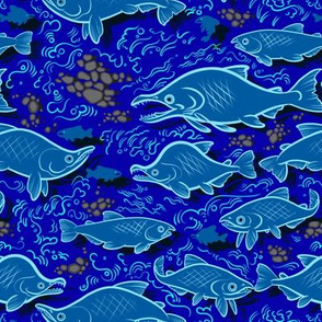 Salmon Upstream 2