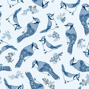 Winter Blue Jays