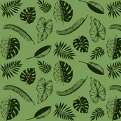 tropical leaves on green