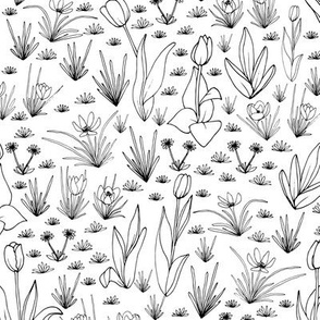 Spring Flora & Fauna - Flora Co-Ordinate Black and White - small scale