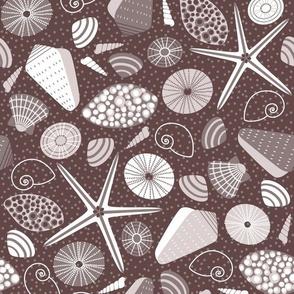 taupe seashells