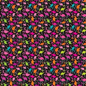 Flamingo summer colorful tropical birds retro girls print black XXS