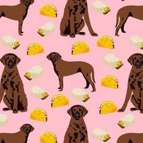 curly coated taco fabric - curly coated retriever dog fabric