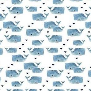 Whale Pod - Tiny with Navy Hearts