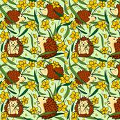 daffodils and hedgehog