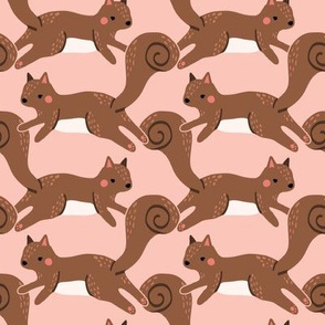 jumping squirrels on pink