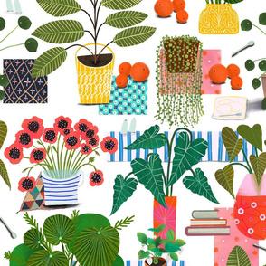 Imaginary house plants Light