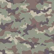 camouflage // hint