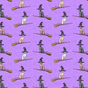 (extra small scale) Witch Hats -  halloween sphynx - Sphynx Cats  - Purple - C20BS
