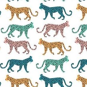 Leopards, Rainbow - Jungle Cat