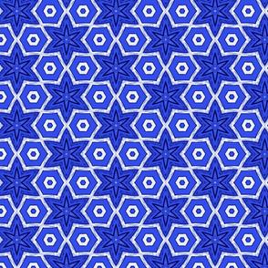 Blue Hexagons & Flowers