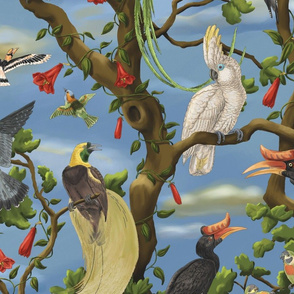 The Bird Chorus Large