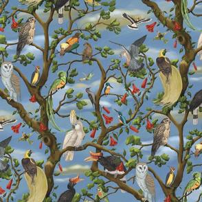 The Bird Chorus Small