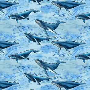 Blue Whales (large scale)