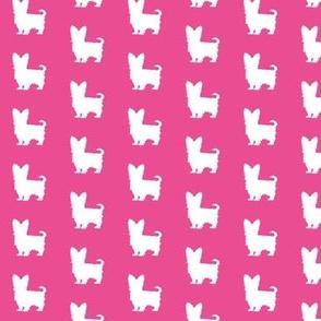 Pink Yorkie