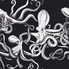 Nautical Octopus-BW