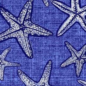 starfish beach textures in blue